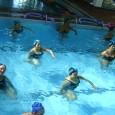 As atividades físicas aquáticas vêm sido mais procuradas por pessoas que querem se exercitar, isso porque, segundo especialistas, esses exercícios são mais divertidos, agradáveis e eficazes, eles estimulam mais os […]