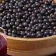 O Açaí é uma fruta característica da Região Norte do Brasil e que vem caindo no gosto dos brasileiros de todas as regiões. Além de fazer parte da economia da […]